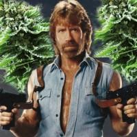 Top Strongest Marijuana Strains of 2019