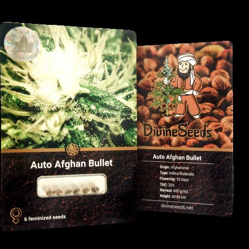 Купить семена Auto Afghan Bullet