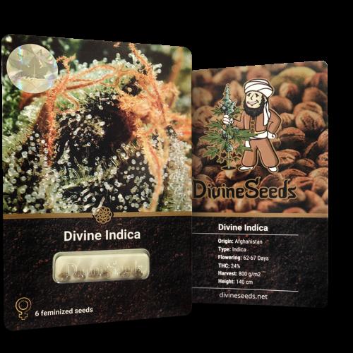Купить семена Divine Indica